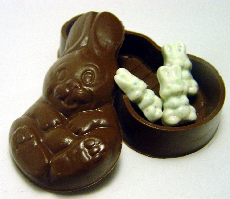 ... - Related Pictures Easter Bunny Chocolate Easter Bunny Funny Picture